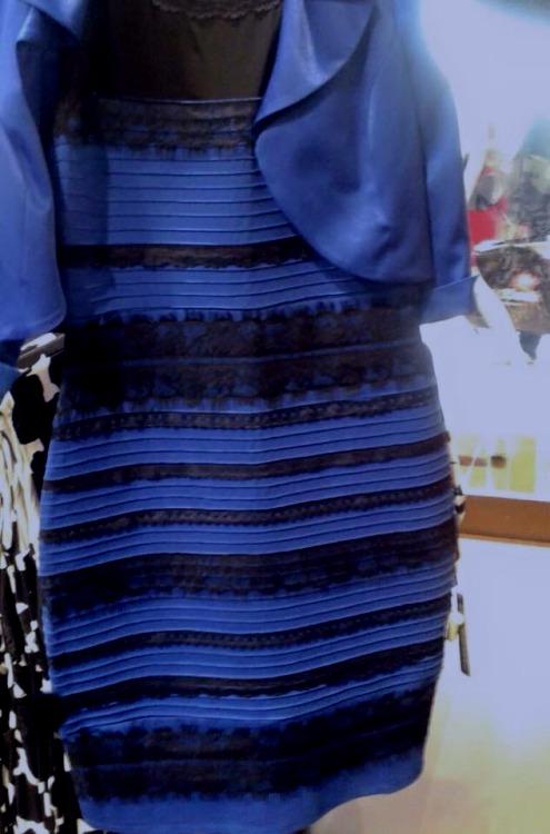 3e0d6ec048 Opinionated Dress Color Simulation